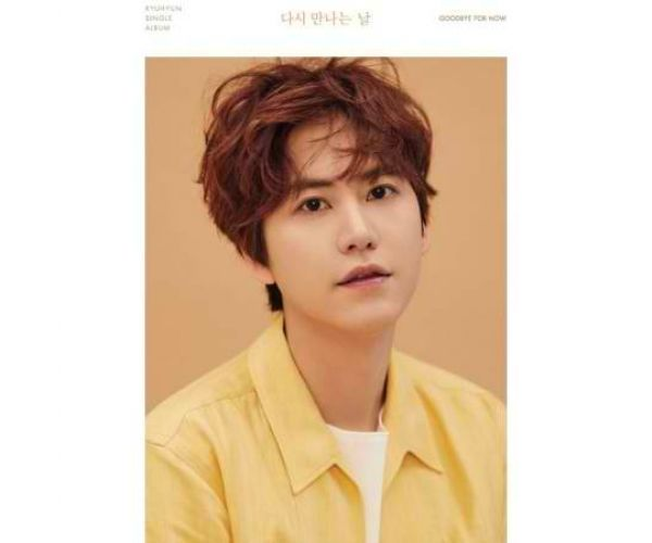 Kyuhyun - Goodbye For Now