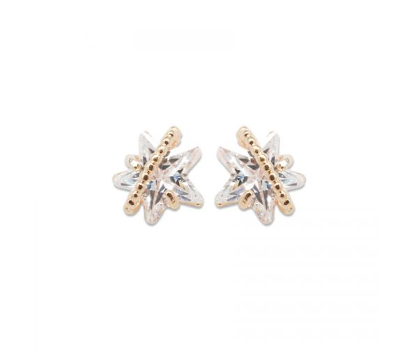 Star ring Earring